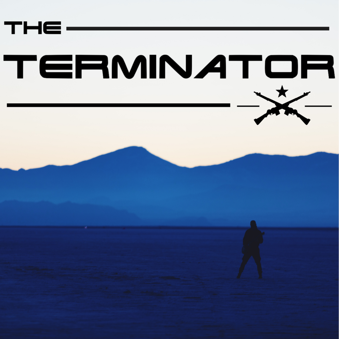 """Silhouette of a man with a guitar in an open space in front of mountains and the words """"The Terminator"""" in the sky"""